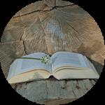 Lektorat Literarische Texte